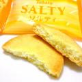 しっかり塩レモン