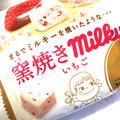 チョコレートと勘違い!
