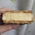 Häagen-Dazs Crispy Sandwich クリスピーサンド キャラメルクラシック