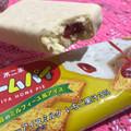 ちゃんとホームパイ(*'ω' *食感アイス