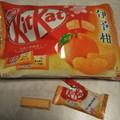 爽やかな柑橘系キットカット
