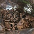 チョコフレーク プレミア クラッシュアーモンド