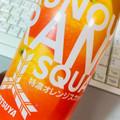果汁20%でもぎたてのようなフレッシュな酸味のオレンジスカッシュ