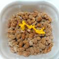 いろいろ食べてナットク (〃゚艸゚)