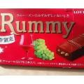 ラムレーズンとチョコが生み出す美味しさに納得