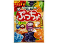 UHA味覚糖 ぷっちょ 4種アソート 93g