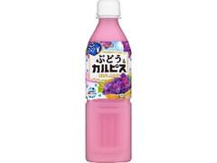 アサヒ ぶどう&カルピス ペット500ml