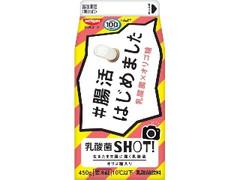 日清ヨーク 乳酸菌SHOT! パック450g