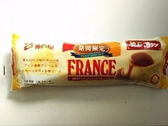 神戸屋 神戸プリンフランス 袋1個