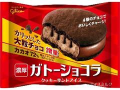 グリコ ガトーショコラ クッキーサンドアイス 袋1個