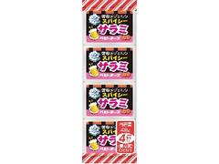 雪印メグミルク スパイシーサラミ ベビーチーズ 袋12g×4