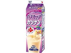 雪印メグミルク ハスカップ カツゲン パック1000ml