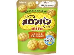 カバヤ 小さなメロンパンクッキー ミニ 袋41g