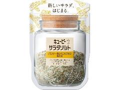 キユーピー サラダソルト パクチー&レモングラスMIX 袋40g