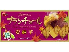 ブルボン ブランチュールミニチョコレート 安納芋