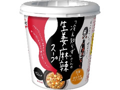 永谷園 冷え知らずさんの生姜麻辣スープ カップ12g