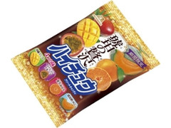 森永製菓 琥珀の贅沢 ハイチュウアソート 袋77g