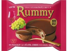 ロッテ ラミーチョコアイス 袋100ml