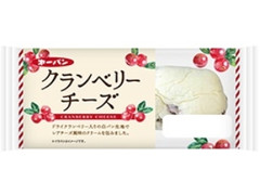 第一パン クランベリーチーズ 袋1個