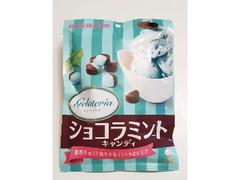 UHA味覚糖 ジェラテリア ショコラミントキャンディ 袋80g