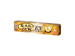 UHA味覚糖 龍角散ののど飴EX 10粒