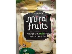 テクセルジャパン ミライフルーツ バナナ 袋12g