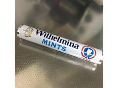 フォルトゥン ウィルヘルミナミント 50g
