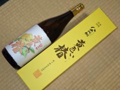 八千代伝酒造 八千代伝 黄色い椿