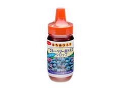 朝日商事 ブルーベリー果汁入りシロップ ボトル180g