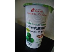 新札幌乳業 さわやか乳酸菌飲料 シークヮーサー果汁入り