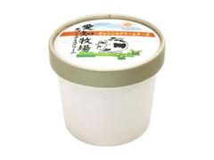 愛知兄弟社 オレンジ&クリームチーズ カップ120ml