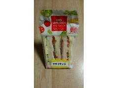 イケダパン 大きなサンド 野菜サンド A
