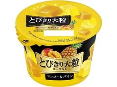 HOKUNYU とびきり大粒ヨーグルト マンゴー&パイン カップ120g