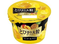 HOKUNYU とびきり大粒ヨーグルト マンゴー&パイン