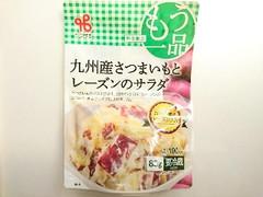 ヤマザキ 九州産さつまいもとレーズンのサラダ