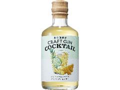 養命酒 CRAFT GIN COCKTAIL ジンジャーとハーブのクラフトジンカクテル 瓶300ml