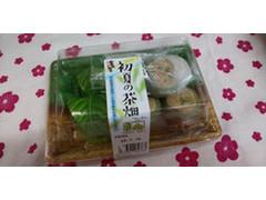 富田屋 初夏の茶畑