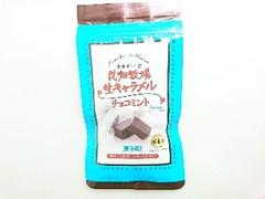 花畑牧場 生キャラメル チョコミント