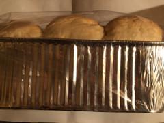 コストコ 食パン 国産ミルクブレッド
