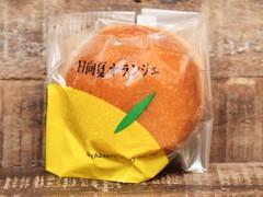 宮崎観光ホテル 日向夏オランジェ 袋1個