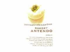 アンテンドゥ お豆ちゃん