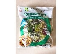 サラダクラブ 10品目のサラダ キャベツやケール 袋170g
