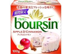 ブルサン アップル&シナモン 箱100g