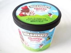 BEN&JERRY'S ミニカップ アイスクリーム チェリー ガルシア カップ120ml