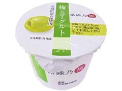 小美玉ふるさと食品公社 梅&ヨーグルト 常陸乃梅 カップ100g