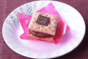厚い円盤状のガトーショコラを、薄い正方形のパイ生地2枚でサンド。