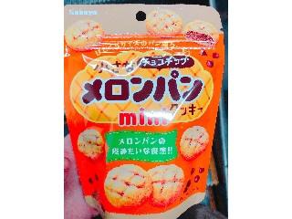 カバヤ クッキー 小さなチョコチップメロンパンminiクッキー 袋35g