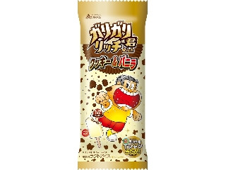 ガリガリ君リッチ クッキー&バニラ