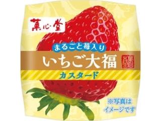 菓心堂 いちご大福カスタード 1個