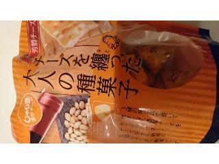 トーノー じゃり豆 チーズを纏った大人の種菓子 袋80g
